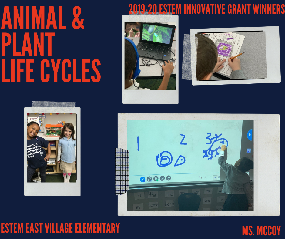 Innovative Grant Winners - Animal & Plant Life Cycles