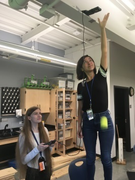 Physics gravity experiment